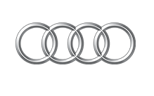 Raxles Audi OEM Quality CV Axles